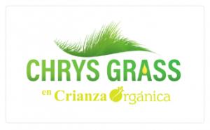 Chrys Bio Plant